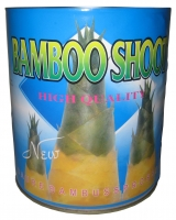 Canned bamboo shoots 3000g